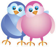 Valentines Day Lovebird Pair Illustration Stock Photos