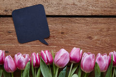 Valentines day message speech bubble and tulips. Easter creativity spring atmosphere funny communication stock photos