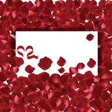 Valentines Day red petals Royalty Free Stock Images