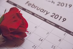 Valentines day. Red rose on Calendar page February 14 with copy space royalty free stock images