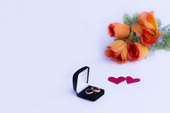 Valentines Day. Rings in the foreground. White background. Valentine`s Day. Wedding. Engagement. Feelings Royalty Free Stock Image