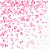 Valentines Day romantic background of pink hearts petals falling. Realistic flower petal in shape of heart confetti. Love. Wedding Royalty Free Stock Image