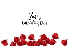 Valentines Day rose petal background. Festive holiday vector. Valentine poster. Random falling petals. Red rose petal isolated white isolated background. Wedding Stock Photos
