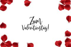 Valentines Day rose petal background. Valentine poster. Random falling petals. Red rose petal isolated white isolated background. Wedding illustration. Zum Stock Photography