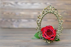 Valentines Day rose in the vintage frame Royalty Free Stock Images