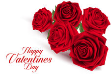 Valentines Day Sweet Red Roses Royalty Free Stock Images