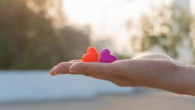 Valentines day and Sweetest day, love heart concept. On hand royalty free stock photo
