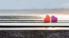 Valentines day and Sweetest day, love heart. Couples concept on sunlight royalty free stock photos