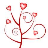 Valentines day tree Stock Photos