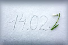 Valentines Day 14.02 written at the white snow background and snowdrop flower. Text 14.02 on a white snow background.Valentines day background royalty free stock photo