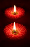 Valentines floral candles stock photo