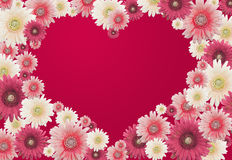 Valentines flower card Stock Photo