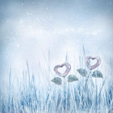 Valentines frozen hearts Royalty Free Stock Photo