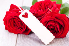 Valentines gift of beautiful red roses Stock Photo