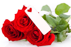 Valentines gift of beautiful red roses Royalty Free Stock Photos