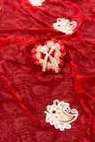 Valentines Day Gift for the love of life royalty free stock photo