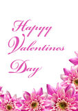 Valentines greetings Stock Photos