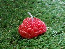 Valentines heart Royalty Free Stock Photo