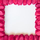 Valentines or Mothers Day Frame - Stock Photos Royalty Free Stock Image