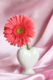 Valentines or Mothers Day Gift - Stock Photo Stock Photos