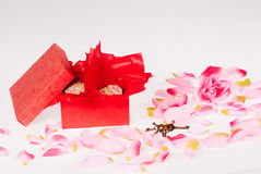 Valentines present Royalty Free Stock Image