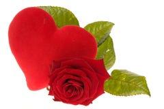 Valentines rose Royalty Free Stock Photo