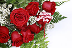 Valentines Roses. Beautiful red roses with a small banner wishing 'Happy Valentines Day Royalty Free Stock Image