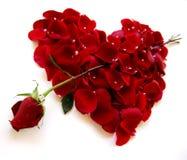valentines roses de rouge de coeur de jour de flèche Photographie stock