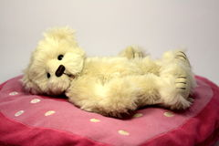 Valentines teddy bear. Teddy bear lying on a heart pillow think of his love stock photo