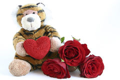 Valentines tiger. Tiger with heart and red roses isolated on white Royalty Free Stock Photography