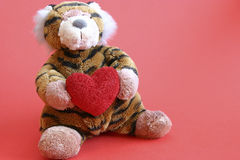 Valentines tiger. With heart on red background Royalty Free Stock Images