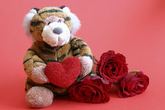 Valentines tiger. With heart and roses on red background Royalty Free Stock Images