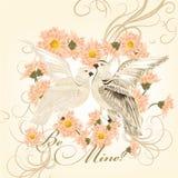 Valentinhälsningkort med gulliga par av den vita duvasymbolnollan vektor illustrationer