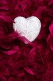Valentinhjärta i fjädrar Arkivbilder
