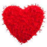 Valentinhjärta som formas som göras av röda fjädrar Arkivfoton