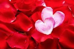 Valentins Tageskarte. Stockfotografie
