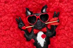Valentinsgrüße verfolgen in der Liebe stockbild