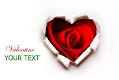 Valentinsgruß-Herz mit roter Rose Stockbild