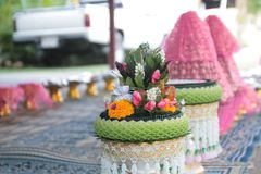 Valentinsgruß, Hochzeitszeremonie Lizenzfreies Stockfoto