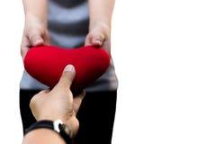 Valentinsgruß ist der Tagesmann und weibliche Hände, die Herz lokalisiert halten Stockbilder