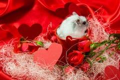Valentinsgruß ` s Tagespostkarte in den roten Tönen mit einer Rose, Herzen Lizenzfreie Stockfotos
