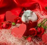 Valentinsgruß ` s Tagespostkarte in den roten Tönen mit einer Rose, Herzen Stockfoto