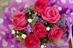 Valentinsgruß ` s Tagesrosafarbene Blume Stockfoto