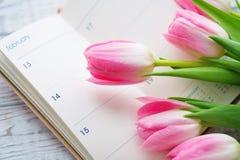 Valentinsgruß ` s Tagesstillleben mit Tulpe blüht Lizenzfreies Stockbild