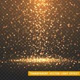 Valentinsgruß-Tagesblumenblattherzen Glühende Lichteffekte des Funkelns lokalisierten realistisches Lizenzfreie Stockbilder