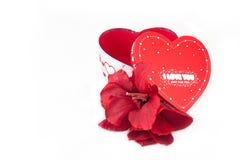 Valentinsgrußgeschenk Lizenzfreie Stockfotos