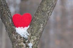 Valentinsgrußherz zwischen zwei Bäumen im Schnee stockfoto