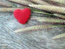 Valentinsgrußhintergrund, wenig rotes Herz und Gras Stockfotos