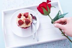 Valentinsgrußkleine kuchen und -hand, die Rotrose halten stockbilder