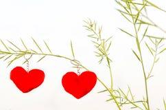 Valentinsgrußliebessymbol, das an einem Baum hängt Stockfotografie